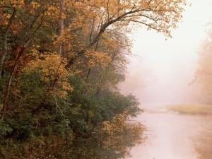 Río nacional del búfalo, Arkansas