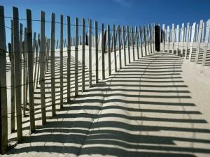 Sombras en la playa