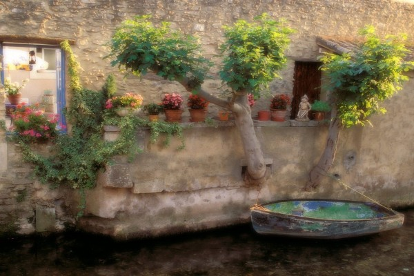 Pequeña barca atada al arbol