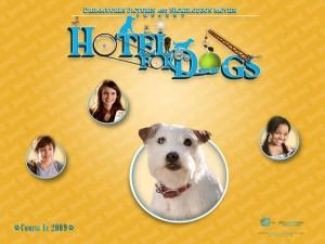Postal: Hotel para Perros