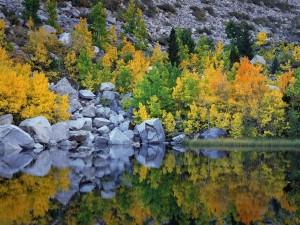 Postal: El otoño reflejado en el agua