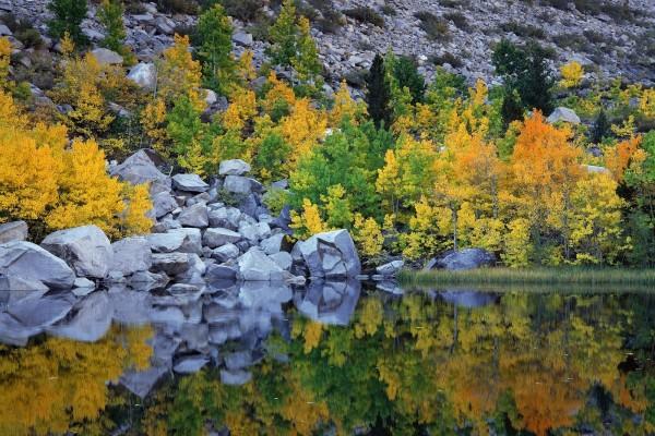 El otoño reflejado en el agua