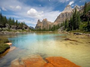Postal: Lago poco profundo cerca de las montañas