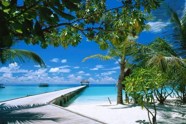 Muelle en la playa