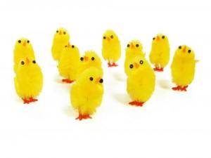 Pollitos amarillos