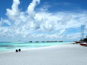 Postal: Playa en las Maldivas