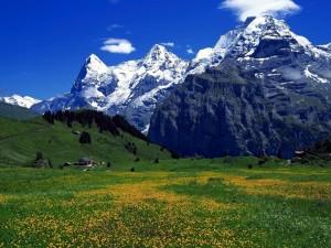 Grandes montañas y un prado verde