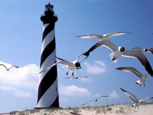 Faro y gaviotas en el Cabo Hatteras, Carolina del Norte