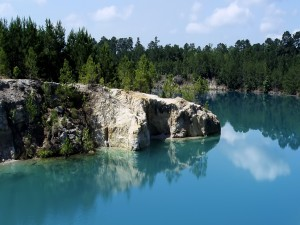 Árboles en las rocas junto al agua azul