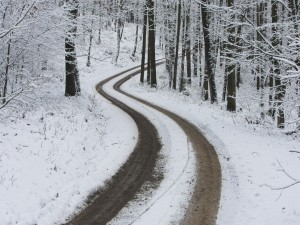 Camino nevado