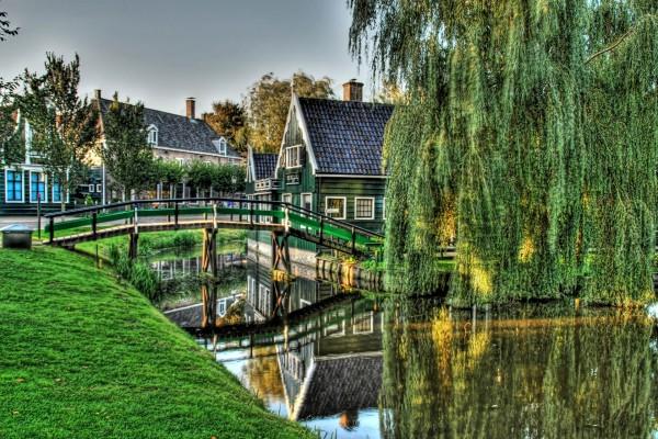 Puente de madera y un gran sauce llorón
