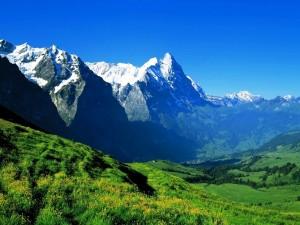 Pradera verde al pie de las montañas nevadas