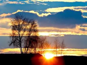 Postal: Un sol dorado asomando por el horizonte