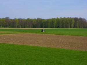 Postal: Campos de cultivo