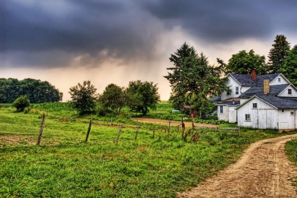 Camino hacia la casa