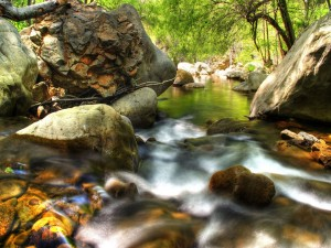 Postal: Siguiendo la corriente del río