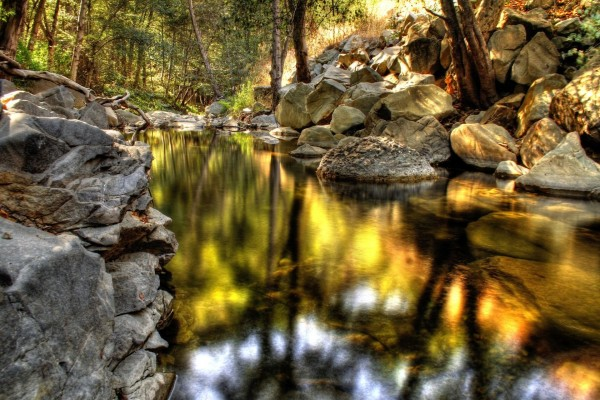 Reflejos dorados en el río