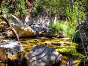 Postal: La luz del sol en el río