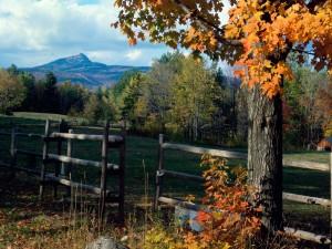 Vista lejana de la montaña Chocorua, Nuevo Hampshire