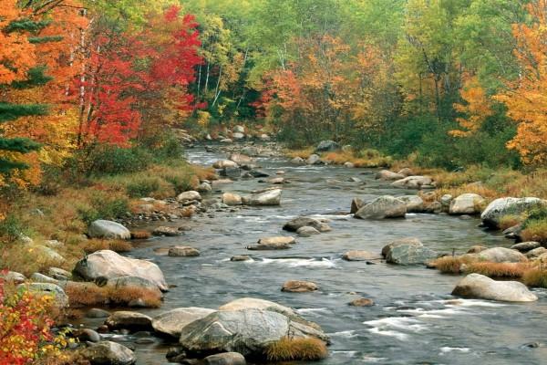 Paisaje otoñal en el río