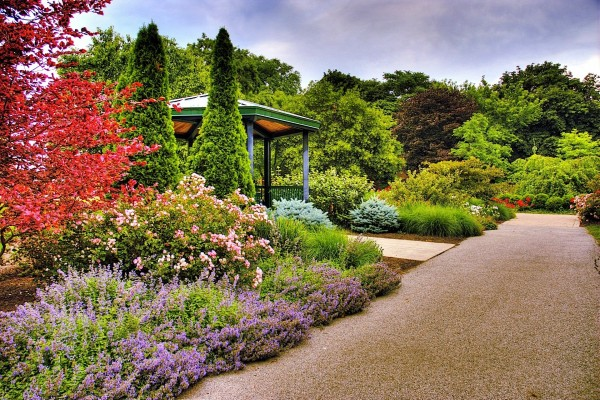 Bonito jardín en el parque