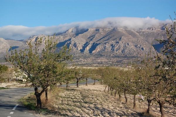 Paisaje de Andalucía