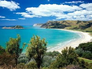 Postal: Vista de una gran playa