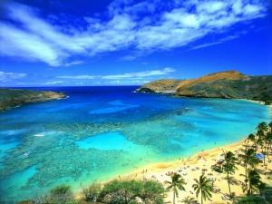 Postal: Gente disfrutando en una playa paradisíaca
