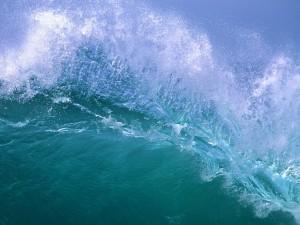 Postal: Agua de mar