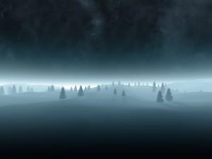 Postal: Árboles en la oscuridad de la noche