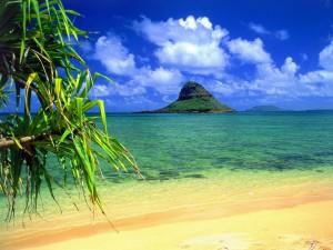 Postal: Viendo el Mokoli'i desde la playa, Hawai