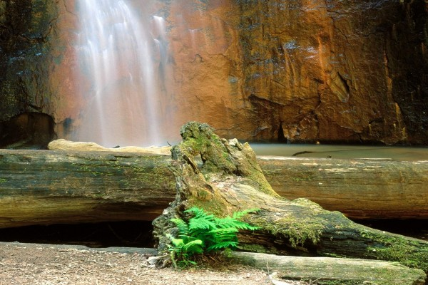 Caída de agua por la pared de roca