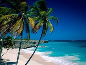 Postal: Playa en Barbados