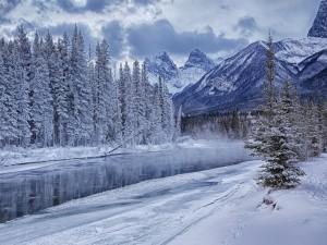 Montañas, bosque y lago cubiertos de nieve