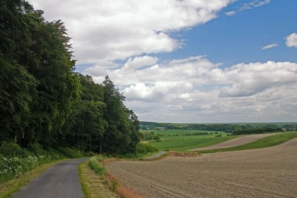 Carretera en un lugar rural