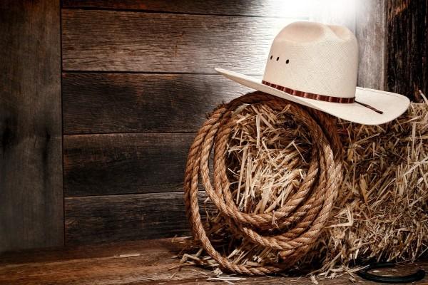 Un sombrero y un lazo