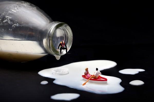 Navegando en la leche