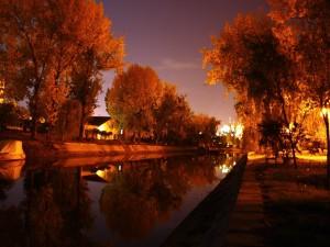 Una romántica tarde de otoño