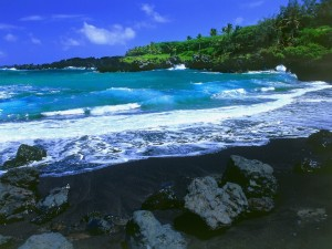 Postal: Playa negra, Hawaii