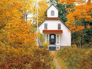 Pequeña casa rodeada de árboles otoñales