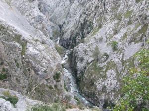 Postal: El río Cares (Asturias - León)