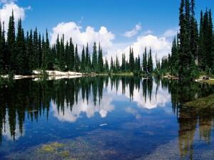 Postal: El fondo del lago