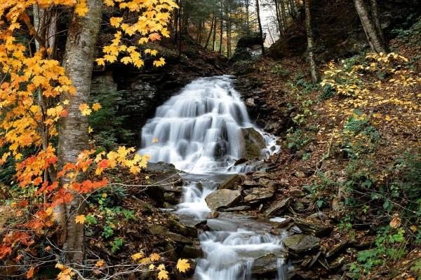Bonita cascada en otoño