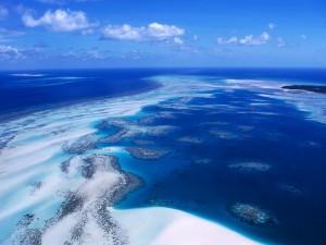 Vista aérea del arrecife de coral