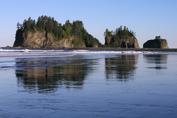Islotes con árboles en la playa