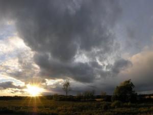 Postal: El sol al amanecer