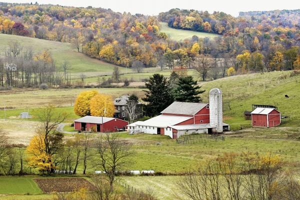 Una granja en otoño