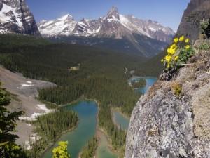Bella vista de las montañas