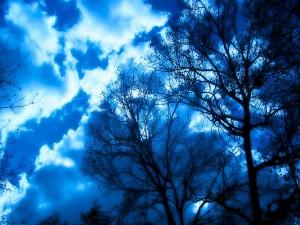 Cielo iluminado en la noche