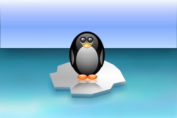 Pingüino sobre el hielo